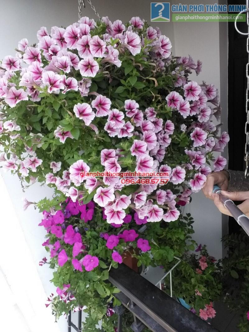 Lắp giàn phơi treo hoa tại Royal City nhà chị Khanh  - 01