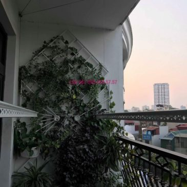Lắp giàn phơi 999B nhà chị Hương, Tòa R4, Royal City, Thanh Xuân, Hà Nội