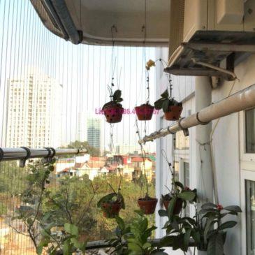 Sửa giàn phơi nhà chú Lợi, ngõ 120 Hoàng Quốc Việt, Cầu Giấy, Hà Nội